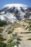 Rastro del Monte Rainier Imagen de archivo libre de regalías