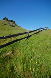 Rastro del Mt Tamaplais Fotografía de archivo