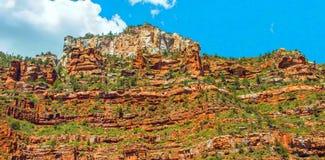 Rastro del norte de Kaibab en el parque nacional de Grand Canyon, Arizona, los Estados Unidos de América fotografía de archivo libre de regalías