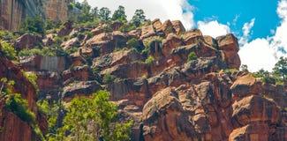 Rastro del norte de Kaibab en el parque nacional de Grand Canyon, Arizona, los Estados Unidos de América imagen de archivo