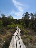 Rastro del pantano de Dunika Imagen de archivo libre de regalías