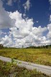 Rastro del verano en Finlandia Foto de archivo