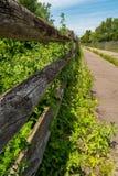 Rastro demasiado grande para su edad abandonado de la bici con la cerca de madera de la descomposición Fotografía de archivo libre de regalías