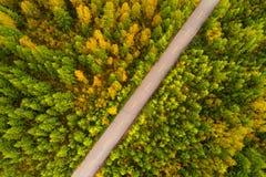 rastro en bosque colorido del otoño Foto de archivo libre de regalías