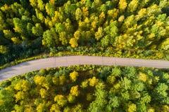 rastro en bosque colorido del otoño Imagen de archivo