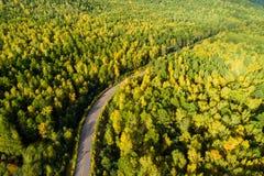 rastro en bosque colorido del otoño Imagenes de archivo