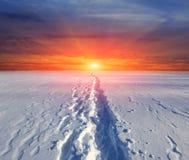 Rastro en nieve en fondo de la puesta del sol Fotos de archivo