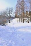 Rastro en parque del invierno Fotografía de archivo libre de regalías