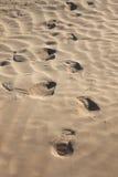 Rastro humano en la arena Imágenes de archivo libres de regalías