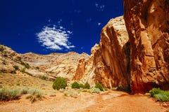 Rastro magnífico del lavado, parque nacional del filón capital, Utah, los E.E.U.U. Foto de archivo