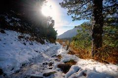 Rastro nevado a lo largo del Strbske Pleso Imágenes de archivo libres de regalías