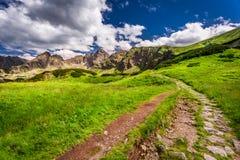 Rastro pedregoso en las montañas de Tatras Foto de archivo