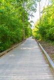 Rastro que camina de madera a través de árboles del verano Foto de archivo libre de regalías