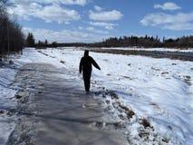 Rastro que camina del invierno canadiense, St Albert, Alberta, Canadá Foto de archivo libre de regalías