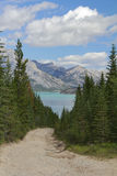 Rastro que lleva a un lago mountain - Alberta, Canadá Imagen de archivo libre de regalías