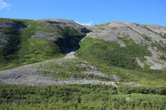 Rastro que va para arriba montaña de Gros Morne Fotografía de archivo libre de regalías