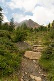 Rastro solo en las montañas Fotos de archivo