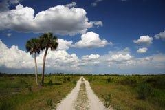 Rastro a través del coto de la pradera de Kissimmee Fotos de archivo libres de regalías