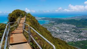 Rastro tropical de la montaña Fotos de archivo libres de regalías