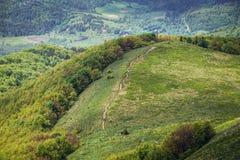 Rastro turístico en las montañas de Bieszczady Imagenes de archivo