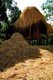 Rastrojo y granero del arroz Imágenes de archivo libres de regalías