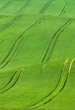 Rastros abstractos de la pista en campo Fotografía de archivo