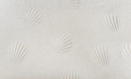 Rastros de cáscaras del mar en una arena blanca Imagenes de archivo