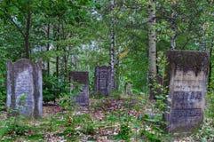 Rastros de cementerio judío de Varsovia - de Brodno Imagen de archivo
