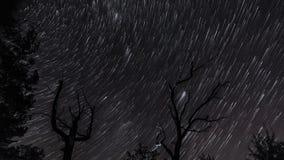 Rastros de la estrella en el cielo nocturno metrajes