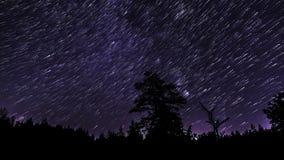 Rastros de la estrella en el cielo nocturno almacen de metraje de vídeo