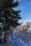 Rastros de montaña del invierno Imagen de archivo