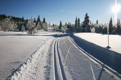 Rastros del esquí Fotografía de archivo