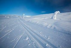 Rastros del esquí del campo a través Imagen de archivo libre de regalías