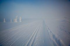 Rastros del esquí del campo a través Fotografía de archivo