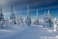 Rastros del esquí del campo a través Imagenes de archivo