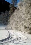 Rastros del esquí del país cruzado Fotos de archivo