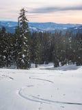 Rastros del esquí a través de la nieve Imágenes de archivo libres de regalías