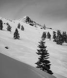 Rastros del esquí a través de la nieve Foto de archivo