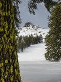 Rastros del esquí a través de la nieve Imagenes de archivo