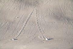 Rastros en la nieve Imágenes de archivo libres de regalías