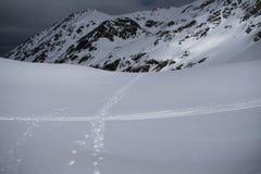 Rastros en nieve imagen de archivo