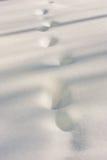 Rastros en nieve Fotos de archivo libres de regalías