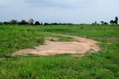 Rastros fangosos en el camino forestal Foto de archivo libre de regalías