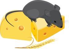 Ratón de campo, oído del trigo y pedazos de queso Imagen de archivo libre de regalías