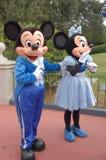 Ratón de Mickey y de Minnie en el mundo de Disney Foto de archivo libre de regalías