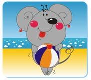 Ratón en la playa Fotografía de archivo libre de regalías