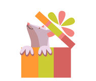 Ratón en una caja de regalo Regalo con un arco Foto de archivo libre de regalías