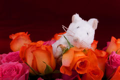 Ratón feliz con el anillo Foto de archivo libre de regalías
