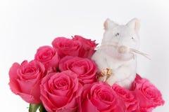 Ratón feliz en amor con el anillo a disposición Fotos de archivo
