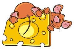 Ratón que duerme y que abraza la una pieza del queso Fotografía de archivo libre de regalías